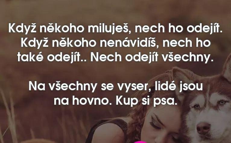 http://www.suzukibandit.cz/openforum/uploads/2680_pes.jpg